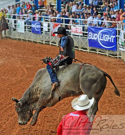 Bull-A-Rama Extravaganza