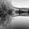 Shenandoah River _ bw