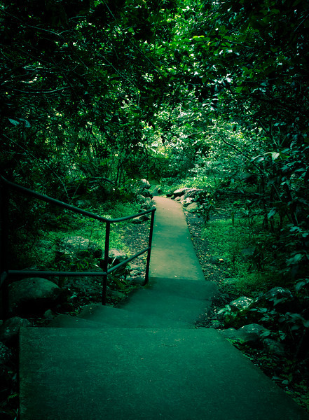 Emerald Stair. Iao State Park.  Maui, Hi.
