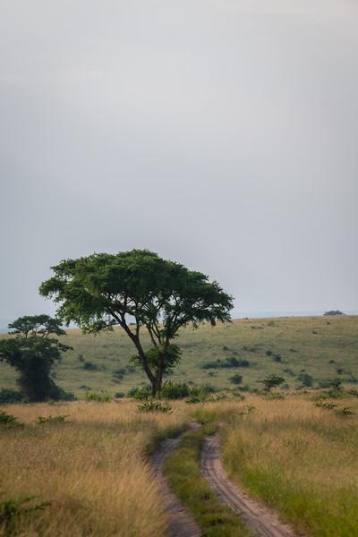 Uganda_T_QE-1635.jpg