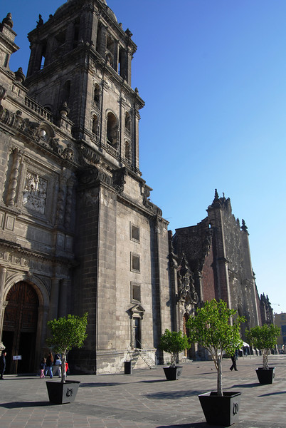 Mexico City 12-5 (25).JPG