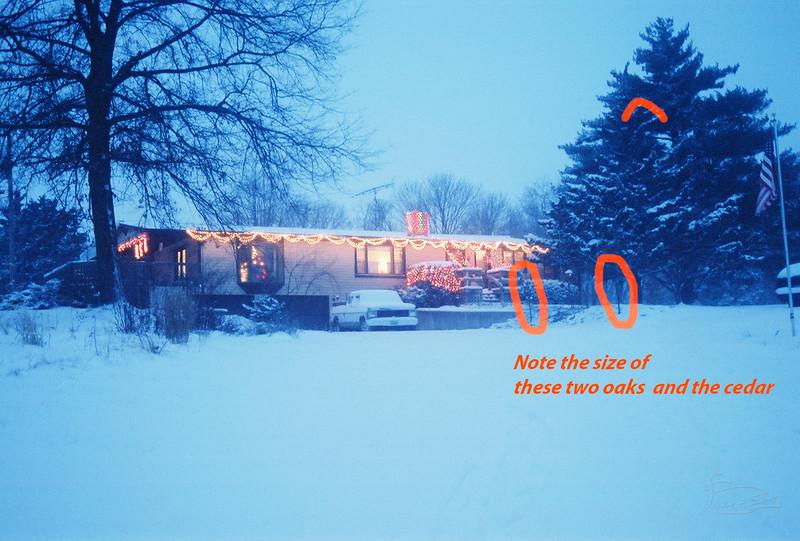 parkingAreaInFrontOfHouse Christmas lights