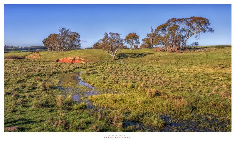 Curraweela Landscape