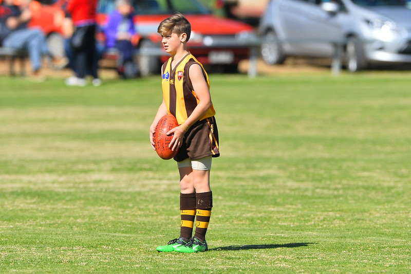 "2016 ""Colts"" FIRST SEMI FINAL Paringa v Brownswell"