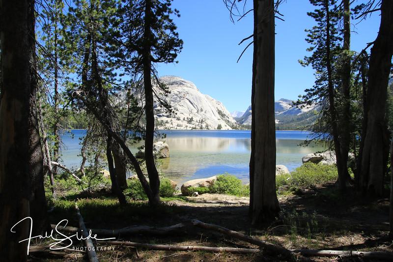 Yosemite 2018 -19.jpg