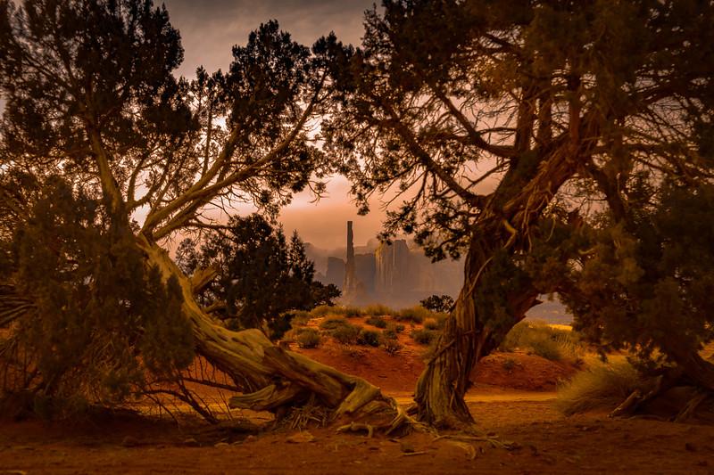 Totem Pole framed by trees.jpg