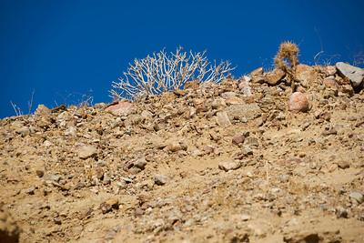 2018-12-30 - Anza Borrego Desert