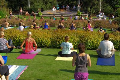 Botanical Yoga (102 hi-res)