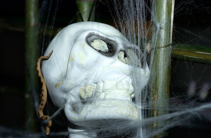 Brookfield Halloween 2003 0142.jpg