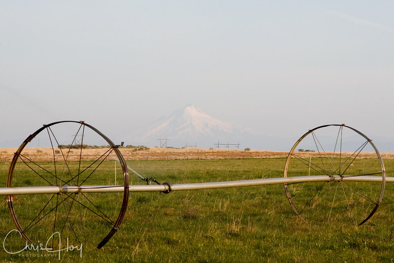 Mt. Hood as seen from Madras, Oregon