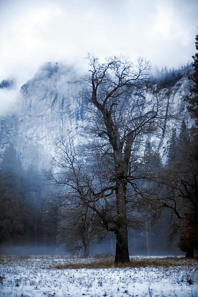 20141213_Yosemite_3002.jpg