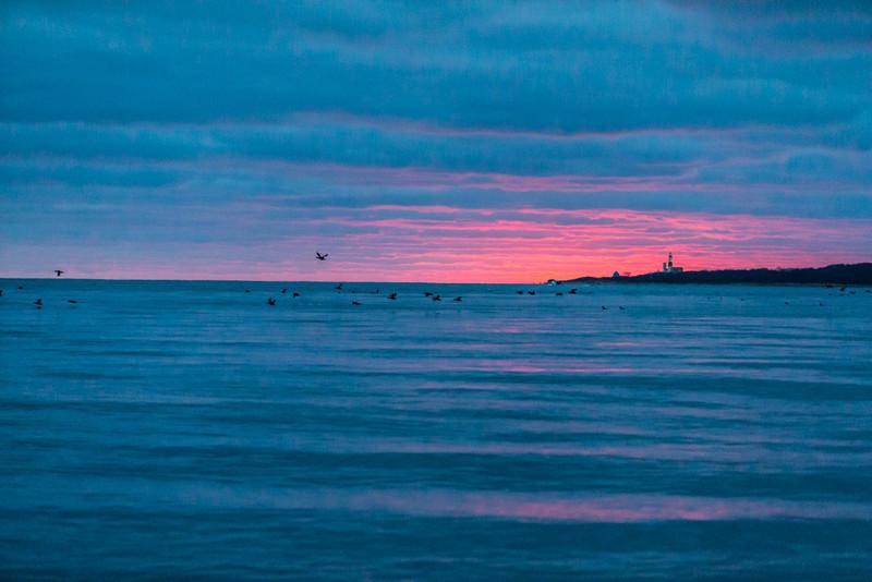 Long Island-106.jpg