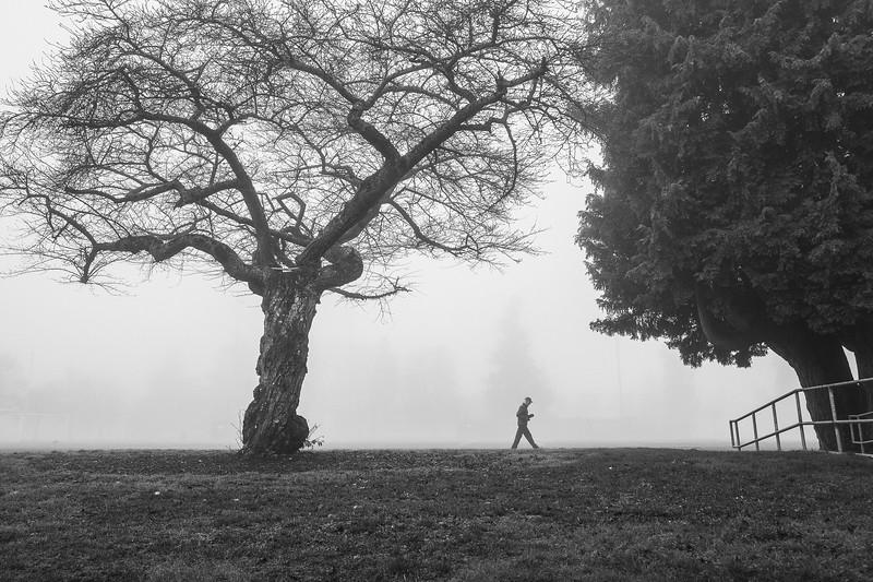 A man jogs around a foggy track at Hiawatha Park.