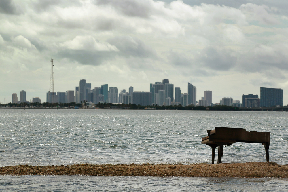 Description of . With the city of Miami skyline behind it a grand piano is seen on a sandbar in Biscayne Bay on January 26, 2011 in Miami, Florida. It is unknown how or why the heavy musical instrument was on the sandbar but some were speculating it was part of a music video production. The piano was charred from being burned.  (Photo by Joe Raedle/Getty Images)