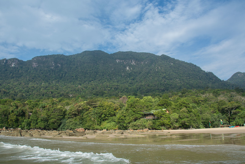 Borneo-2014-212.jpg