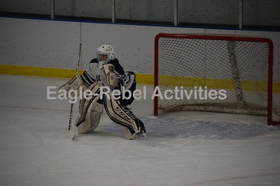 Eagle Hockey Game Pictures