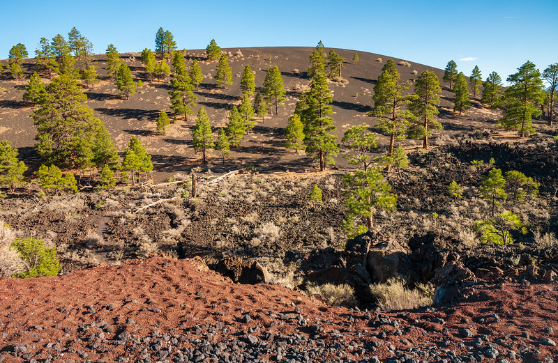 Eerie Landscape of Sunset Crater National Monument