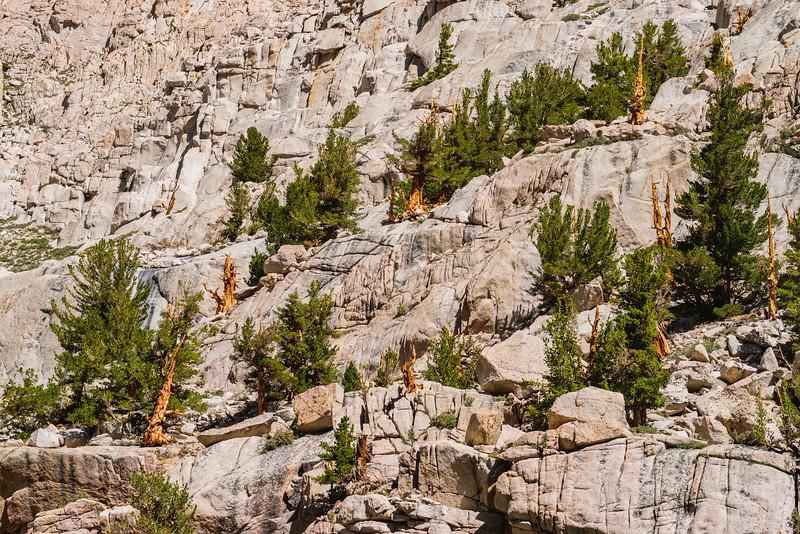 189-mt-whitney-astro-landscape-star-trail-adventure-backpacking.jpg