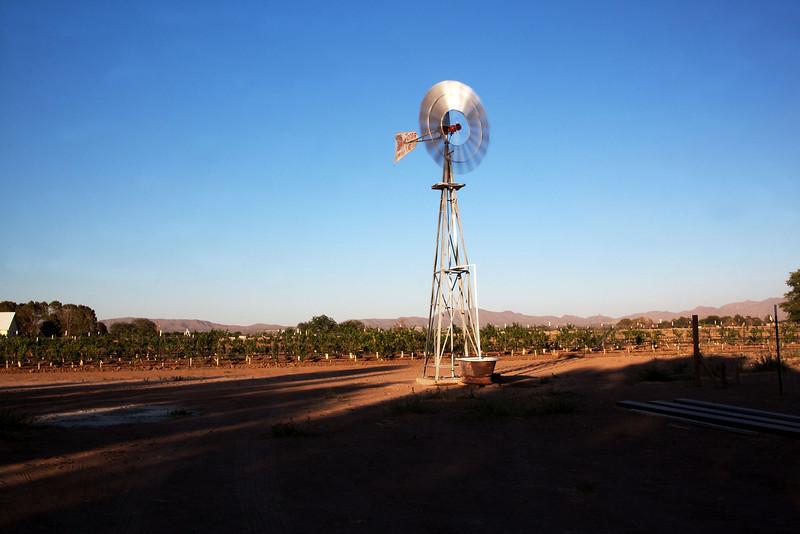 IMG_5612 windmill.jpg
