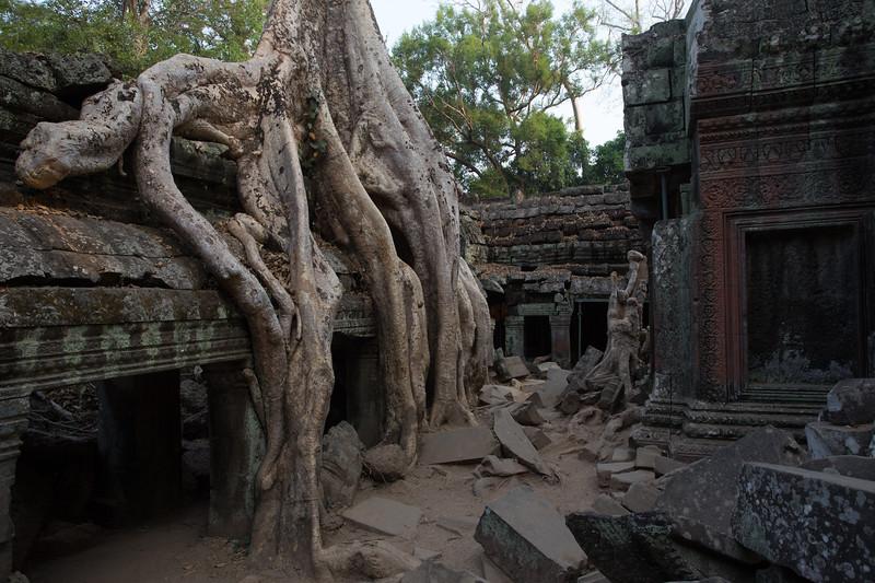 Cambodia-1701.jpg