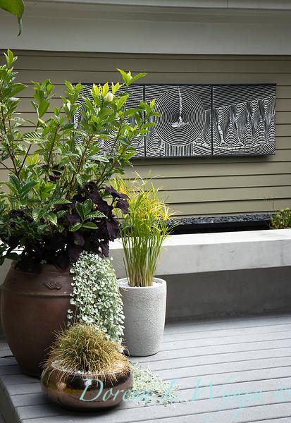 Lisa Bauer - designer's garden_1273.jpg