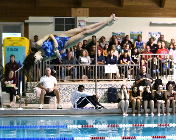 10/29/2019 Mike Orazzi | StaffrBristol Easterns McKenzie Aparoduring diving at Tuesdays girls swim meet with Bristol Central.