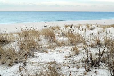 Landscapes, Gilgo Beach, NY, (2-10-07)