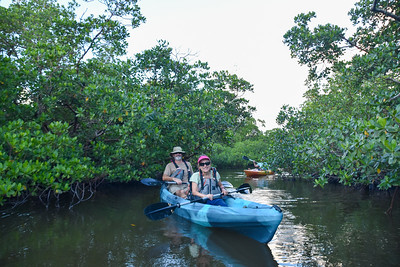 9AM Mangrove Tunnel Kayak Tour - Royere & Bostock