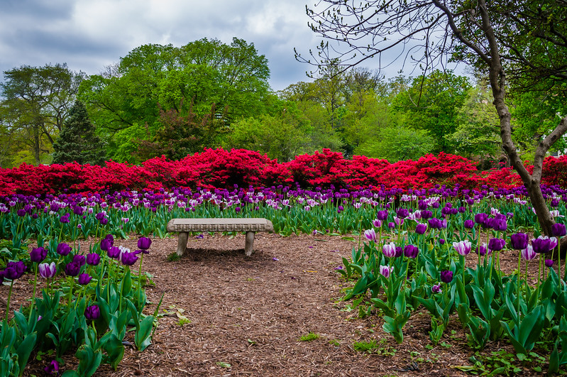 Gardens and bench at Sherwood Gardens Park, in Guilford, Baltimore, Maryland.