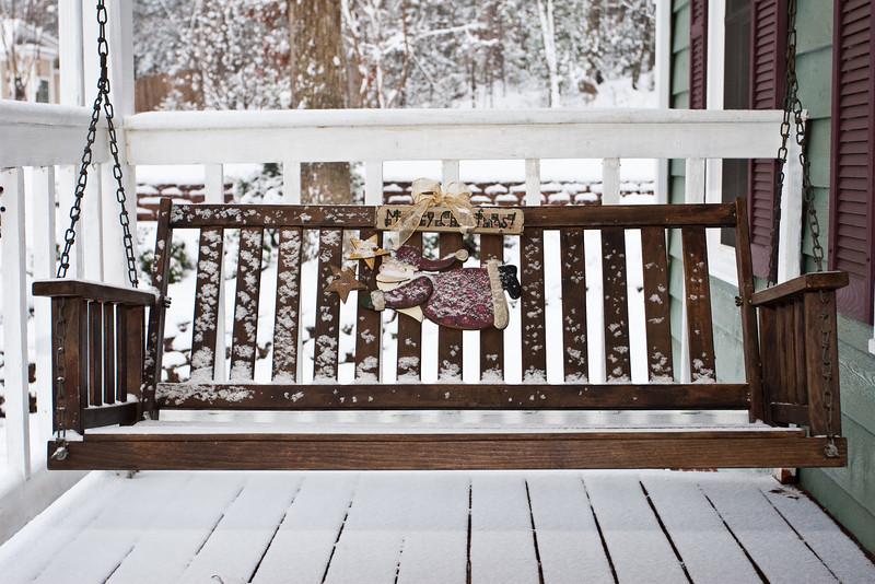 December Snow 2010-5