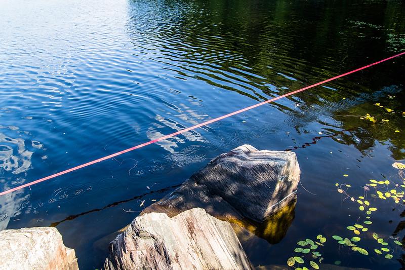 2015-07-26 Lac Boisseau-0028.jpg