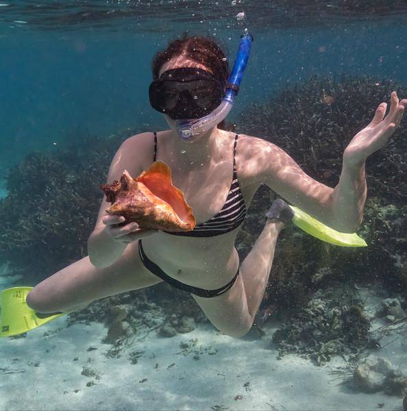 Snorkelling - page028.jpg