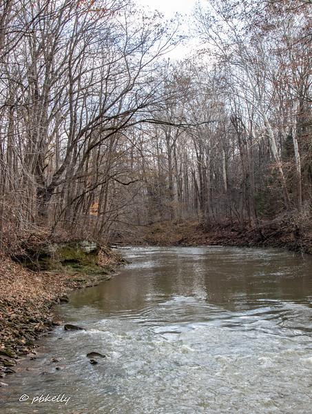 river 112518-4.jpg
