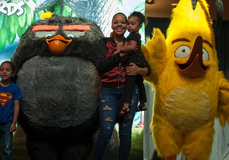 Angry Birds StoneCrest Mall 169.jpg