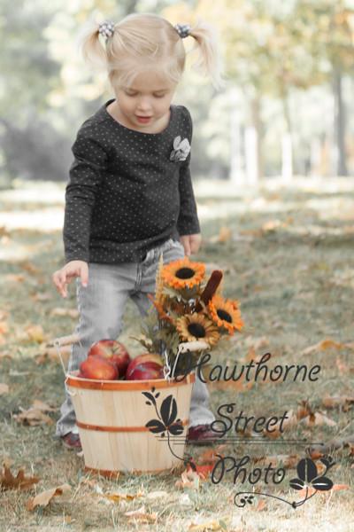Fall 2015-a32c.jpg