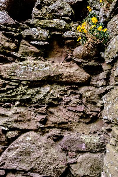 20190508 Dunnottar Castle 033.jpg