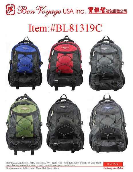 BL81319C.jpg