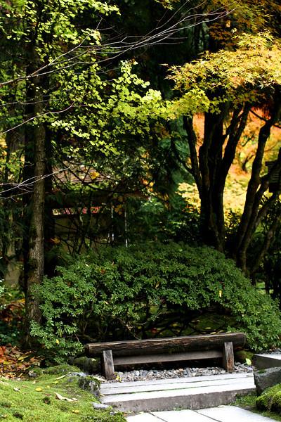 Portland Japanese Garden  11-11-11  3515.jpg