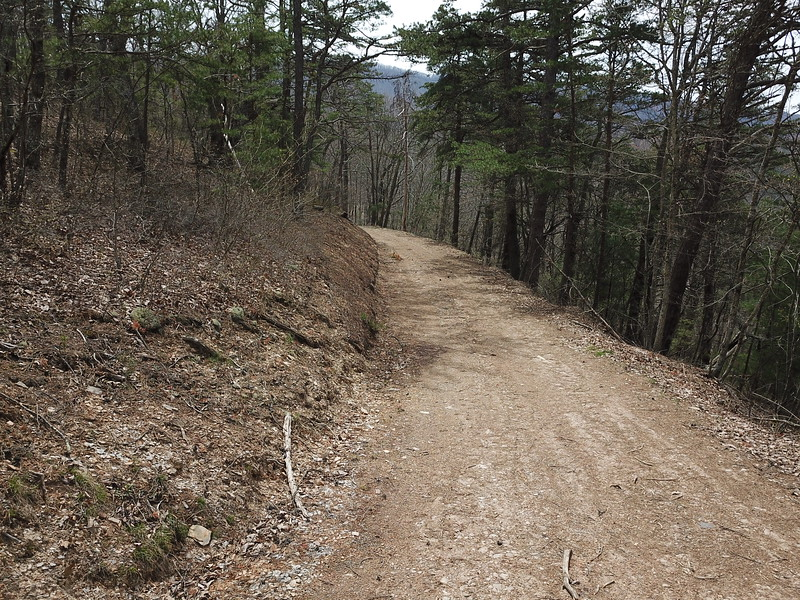 Nearly 5 miles of drivable trails through the property