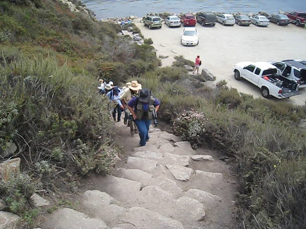 Point Lobos 8-2009 25 web-poster.jpg
