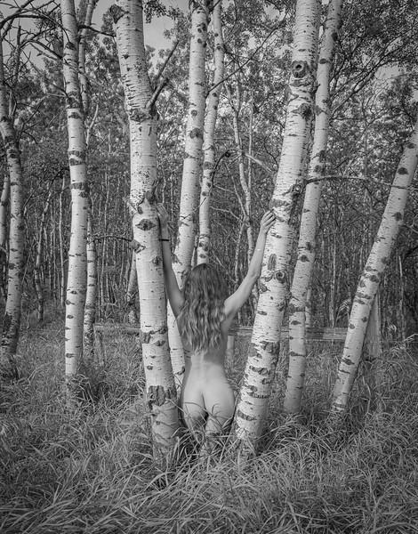 Gabriela - Birch Trees-5540.jpg