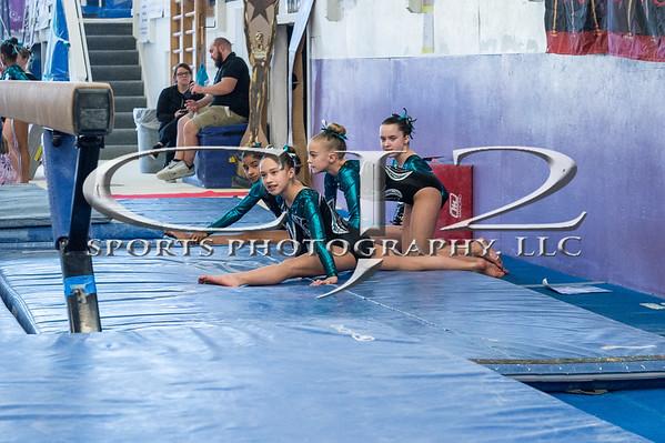 3-7-2020 Apex Lights Camera Action Gymnastics Meet Level 4