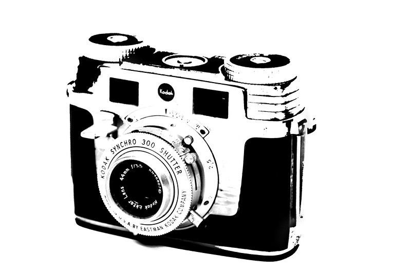 kodak vintage camera print lilacpop janna bissett.jpg