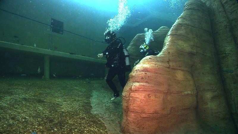Underwater Walk Edit.00_00_45_21.Still019.jpg