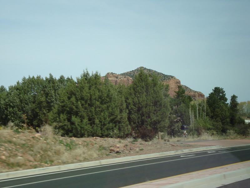Arizona Feb. 2010 016.JPG