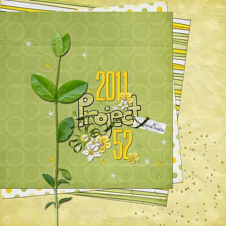 2011 Digital Scrapbook