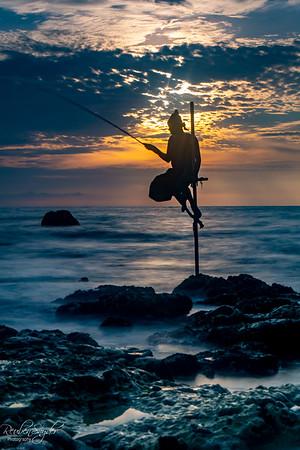 Koggala Stilt Fisherman