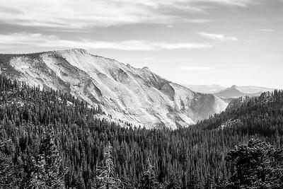 Yosemite/Bodi CA