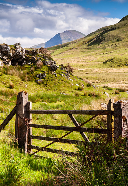 Moel Hebog in Snowdonia