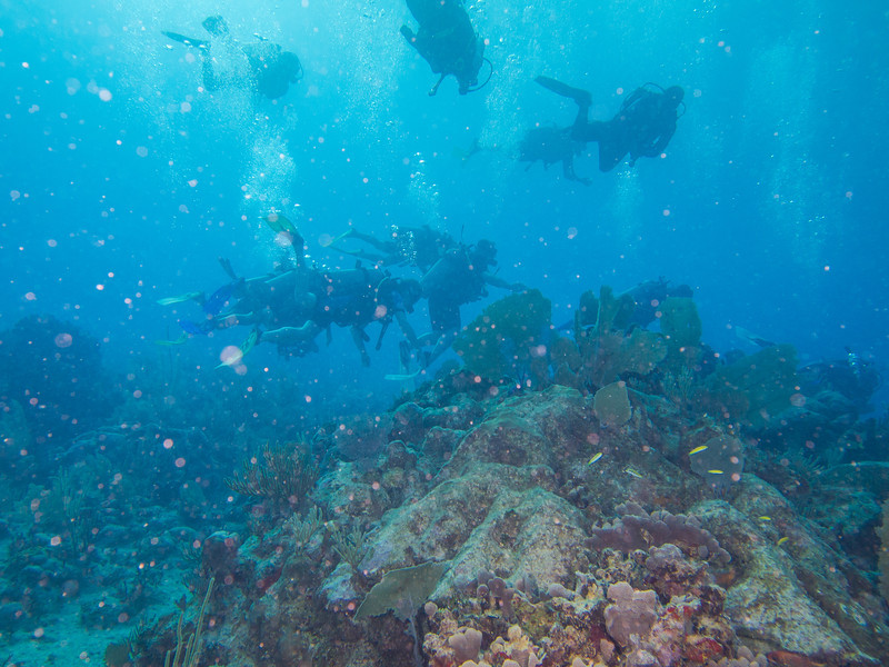 Tulum Trip - Diving 20130405-17-33 _405261504.jpg